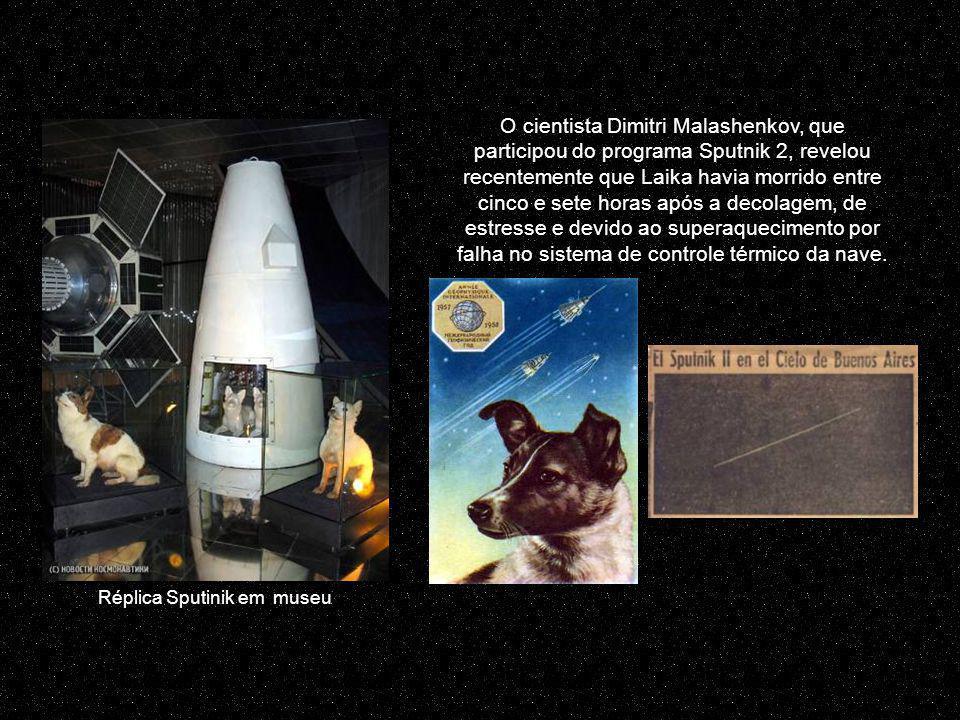 Relatórios oficiais eram de que Laika fôra posta para dormir tranquilamente com um gás na cápsula ou morreu quando as baterias de provisão de ar expiraram após uma semana em órbita.