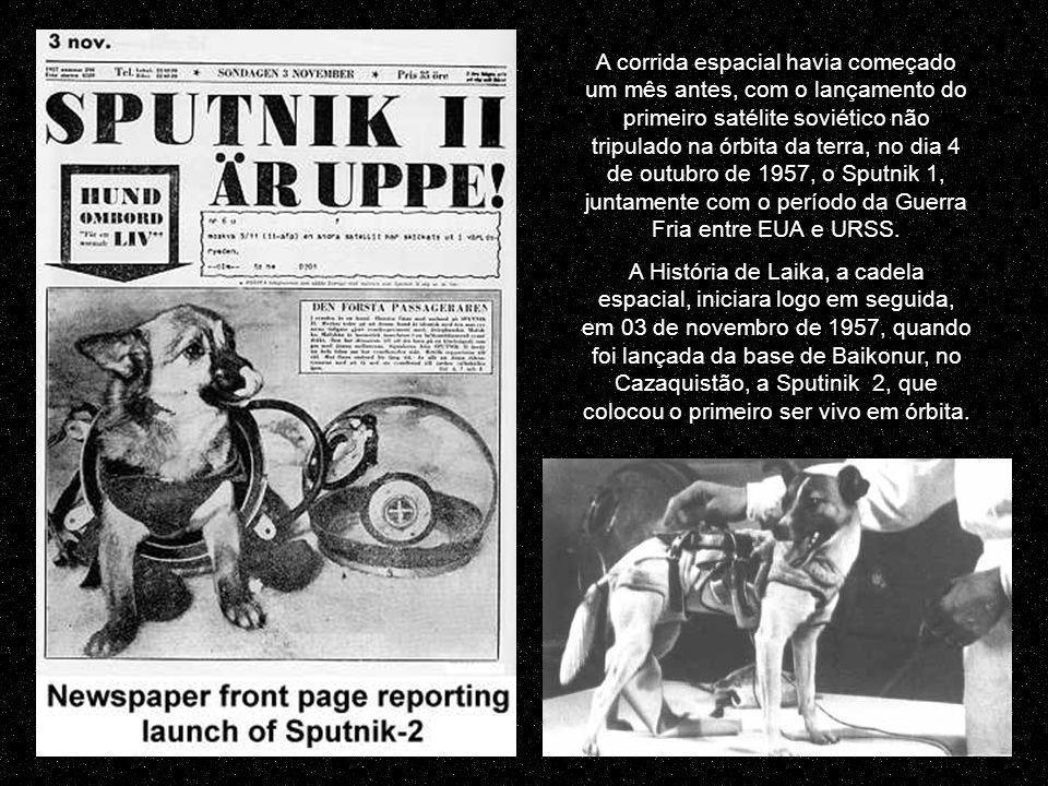 Em 1998 numa conferência em Moscou, ele disse à imprensa: Estampa de Laika, em selo dos Emirados Árabes - 1971 Trabalhar com animais é uma fonte de sofrimento para todos nós.