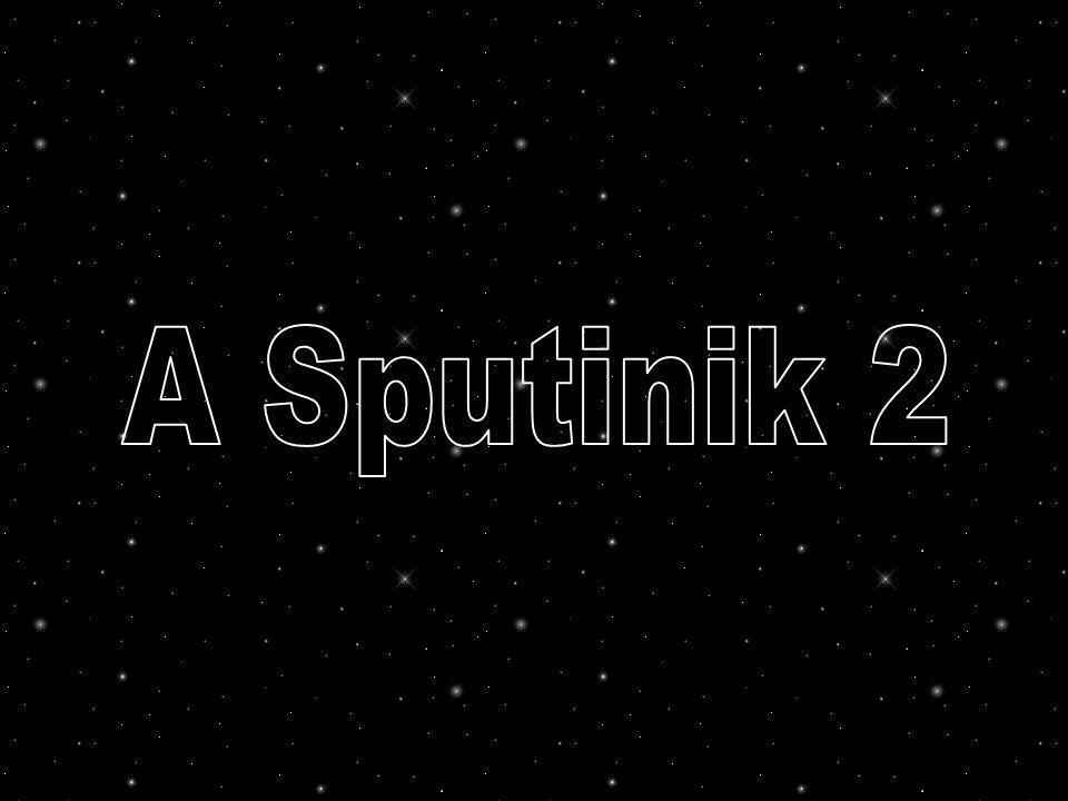 Oficialmente o objetivo de enviar Laika ao espaço era criar procedimentos para depois serem aplicados aos cosmonautas russos.