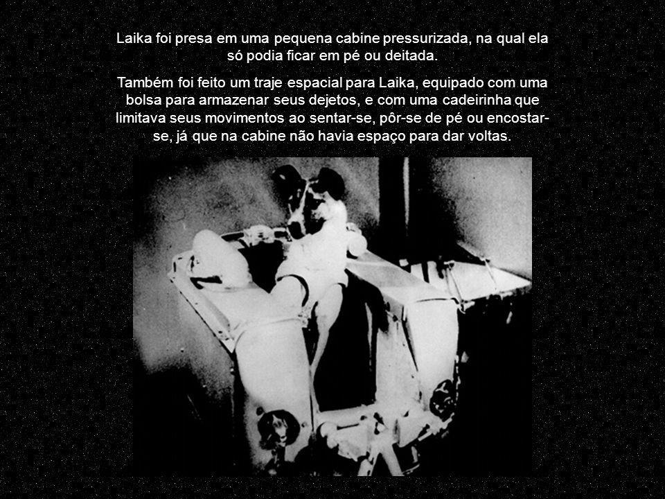 O vôo de Laika instigou a imaginação das pessoas em todo o mundo e abriu caminho para a participação humana em vôos espaciais.