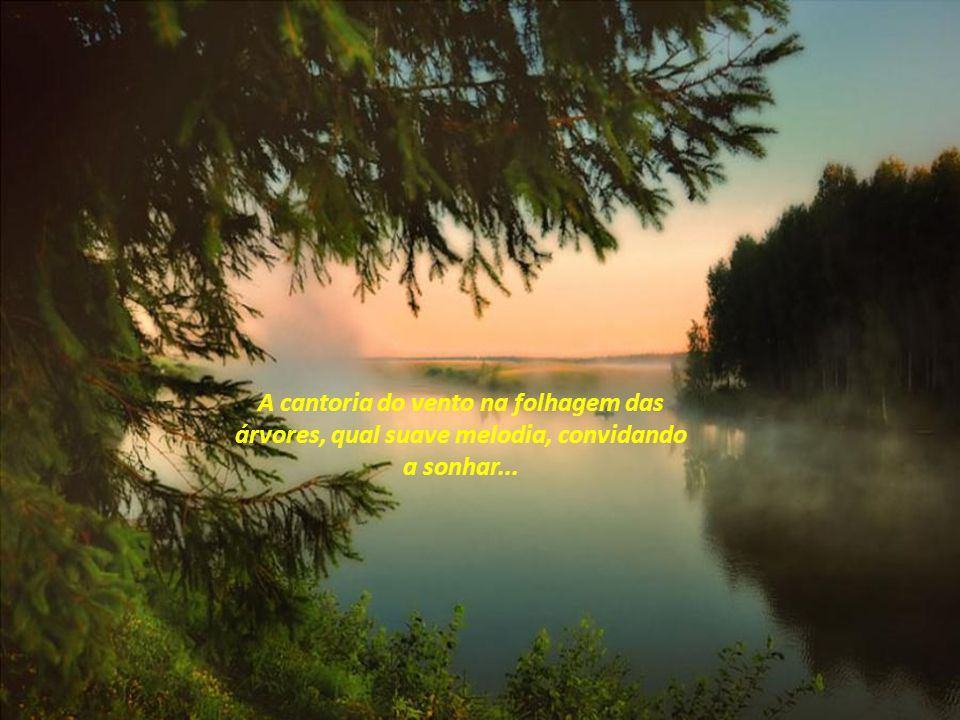 A cantoria do vento na folhagem das árvores, qual suave melodia, convidando a sonhar...