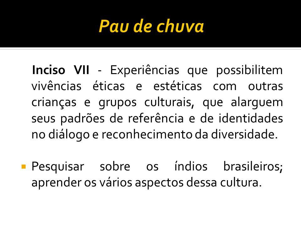 Inciso VII - Experiências que possibilitem vivências éticas e estéticas com outras crianças e grupos culturais, que alarguem seus padrões de referênci