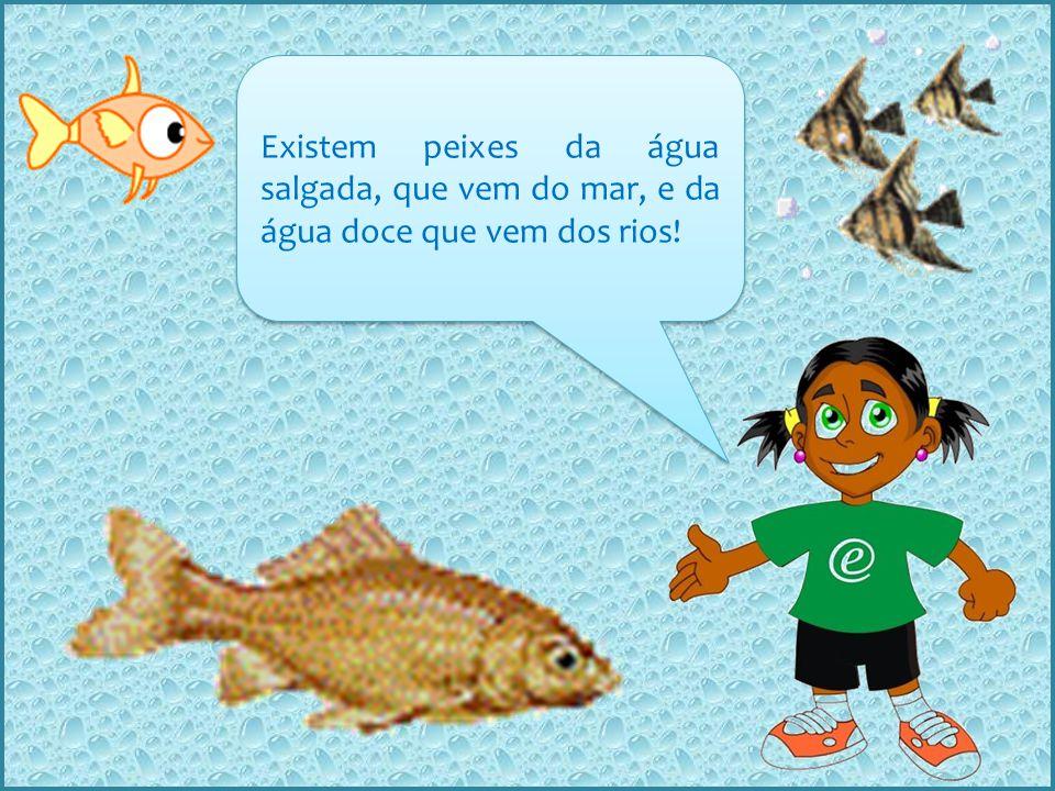 Existem peixes da água salgada, que vem do mar, e da água doce que vem dos rios!