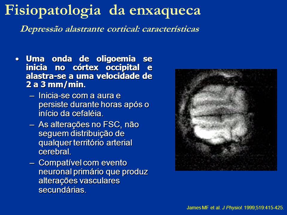 Uma onda de oligoemia se inicia no córtex occipital e alastra-se a uma velocidade de 2 a 3 mm/minUma onda de oligoemia se inicia no córtex occipital e