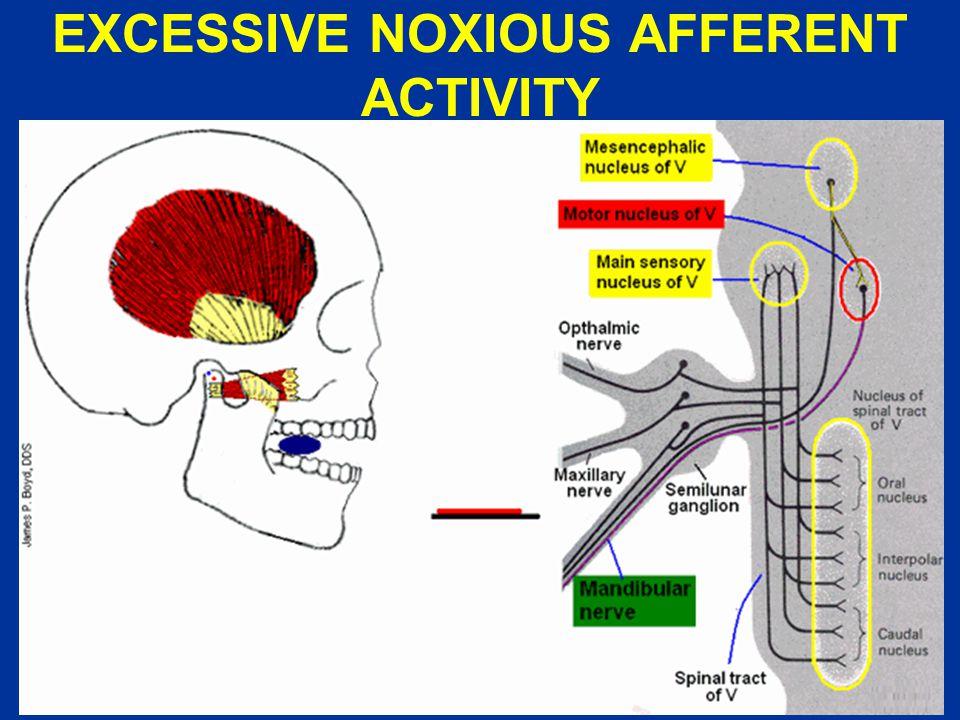 EXCESSIVE NOXIOUS AFFERENT ACTIVITY