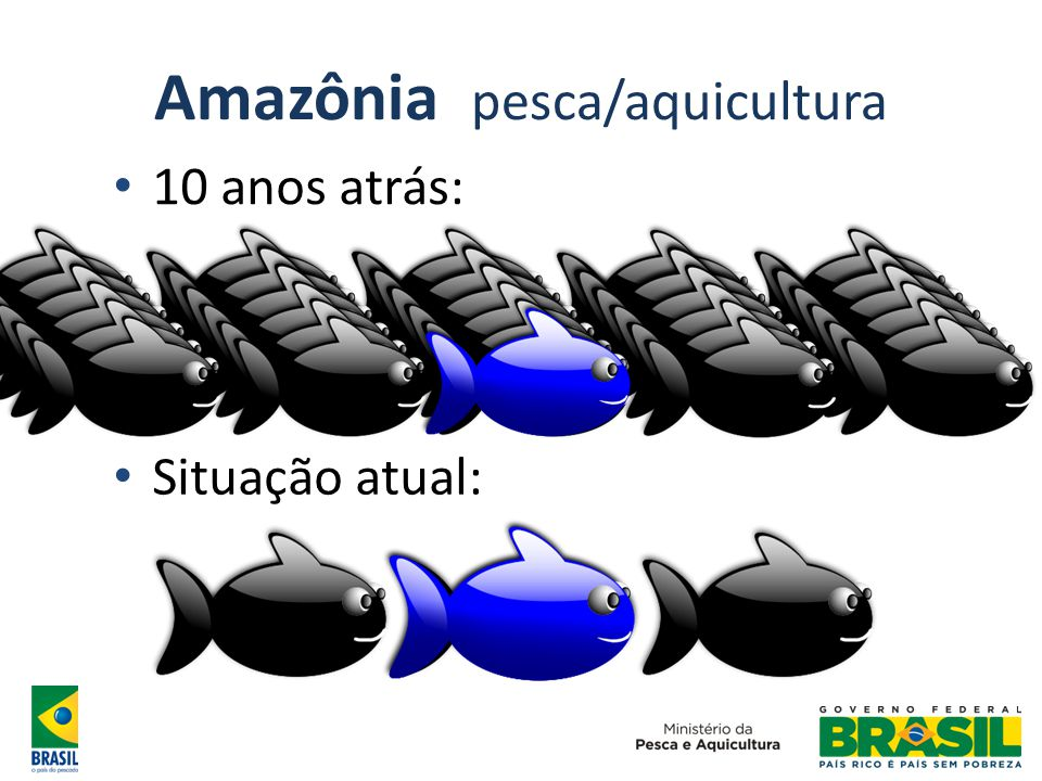 Amazônia pesca/aquicultura 10 anos atrás: Situação atual: