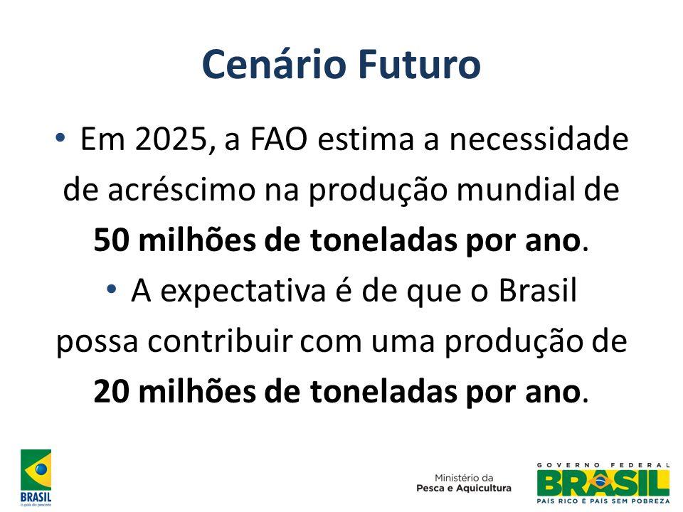 Cenário Futuro Em 2025, a FAO estima a necessidade de acréscimo na produção mundial de 50 milhões de toneladas por ano. A expectativa é de que o Brasi
