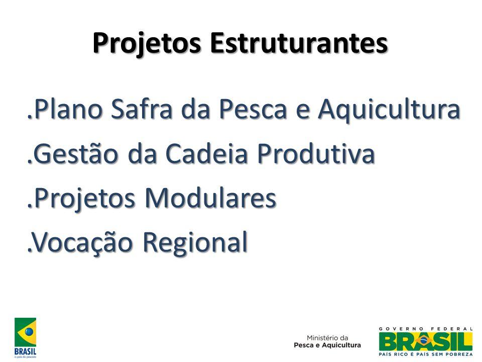 Projetos Estruturantes.Plano Safra da Pesca e Aquicultura.Gestão da Cadeia Produtiva.Projetos Modulares.Vocação Regional