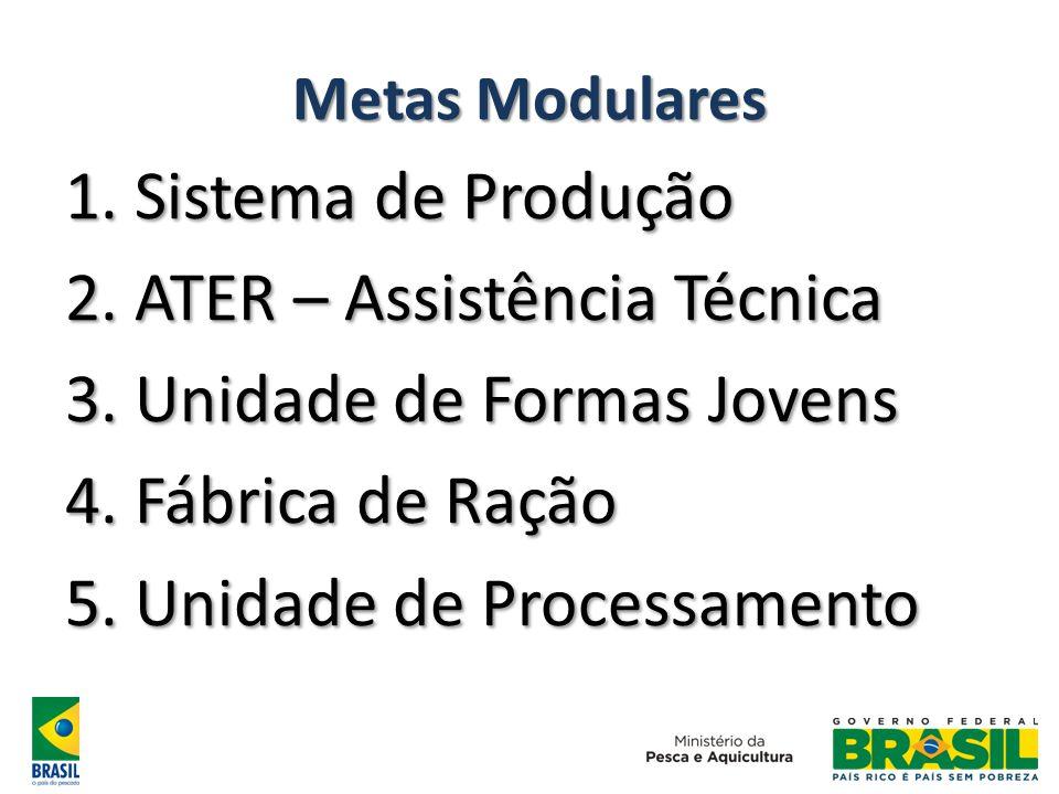 Metas Modulares 1. Sistema de Produção 2. ATER – Assistência Técnica 3. Unidade de Formas Jovens 4. Fábrica de Ração 5. Unidade de Processamento