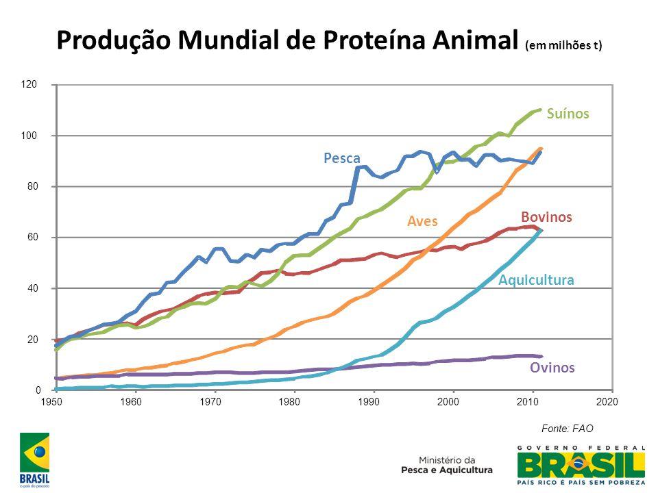 Produção Mundial de Proteína Animal (em milhões t) 0 20 40 60 80 100 120 19501960197019801990200020102020 Fonte: FAO Bovinos Suínos Ovinos Aves Pesca