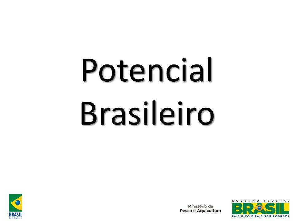 Produção Brasileira de Proteína Animal (em milhões t) Fonte: FAO 0 2 4 6 8 10 12 196119711981199120012011 Bovinos Suínos Aves Pesca Aquicultura