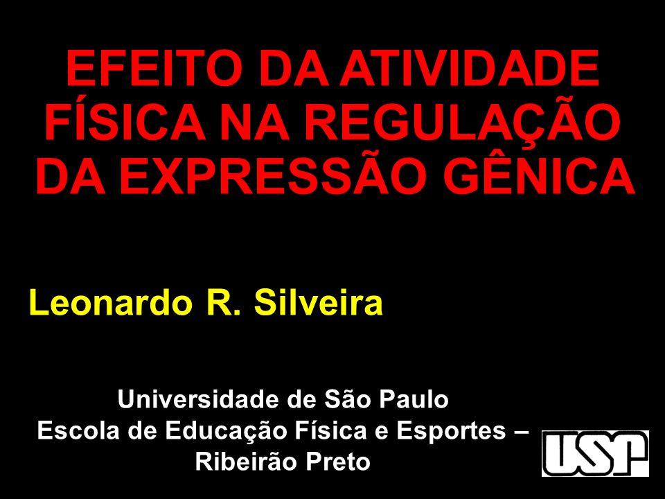 Universidade de São Paulo Escola de Educação Física e Esportes – Ribeirão Preto Leonardo R. Silveira EFEITO DA ATIVIDADE FÍSICA NA REGULAÇÃO DA EXPRES