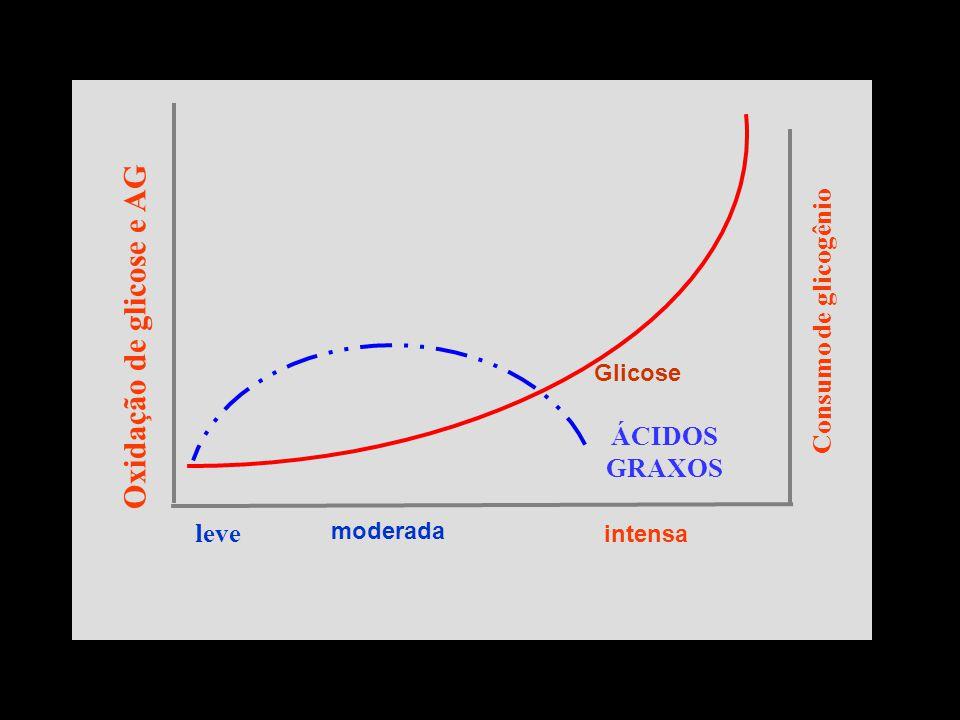 leve Consumo de glicogênio Glicose ÁCIDOS GRAXOS moderada intensa Oxidação de glicose e AG