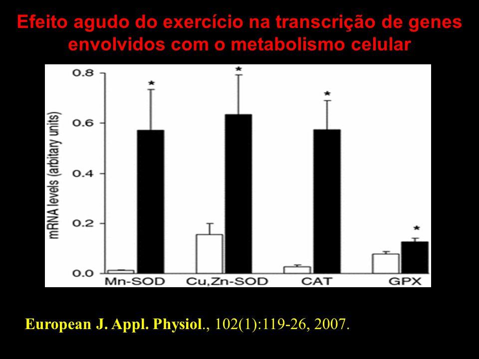 European J. Appl. Physiol., 102(1):119-26, 2007. Efeito agudo do exercício na transcrição de genes envolvidos com o metabolismo celular