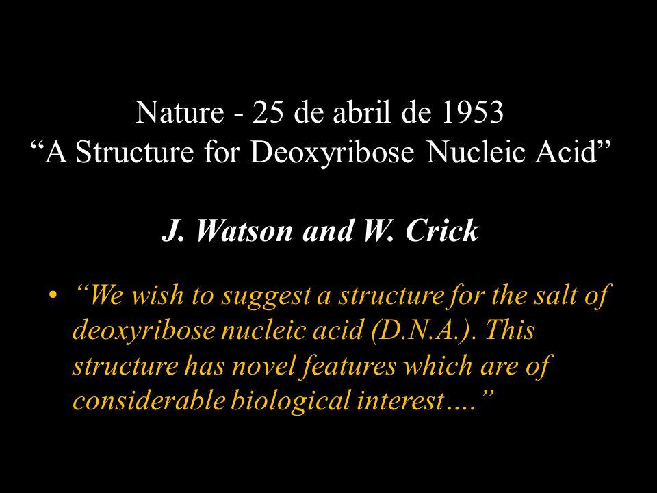 European J.Appl. Physiol., 102(1):119-26, 2007.
