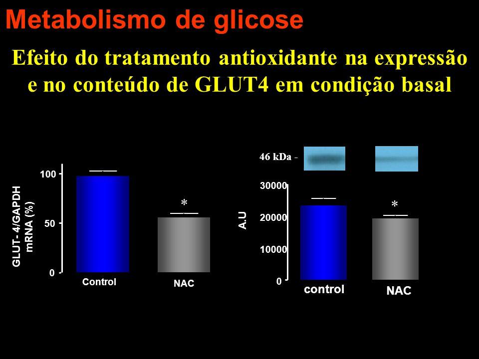 Efeito do tratamento antioxidante na expressão e no conteúdo de GLUT4 em condição basal 0 50 100 Control NAC GLUT- 4/GAPDH mRNA (%) * 0 10000 20000 30