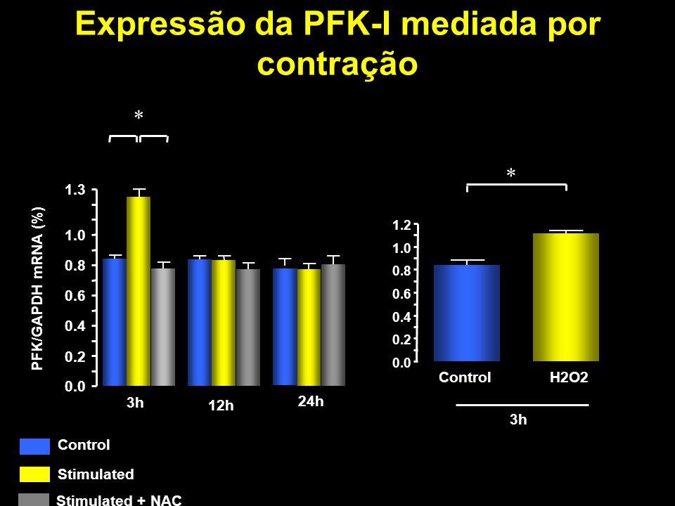 Expressão da PFK-I mediada por contração 0.0 0.2 0.4 0.6 0.8 1.0 1.2 ControlH2O2 0.0 0.2 0.4 0.6 0.8 1.0 1.3 * 3h 12h 24h PFK/GAPDH mRNA (%) Control S