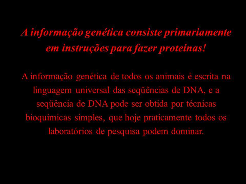 A informação genética consiste primariamente em instruções para fazer proteínas! A informação genética de todos os animais é escrita na linguagem univ