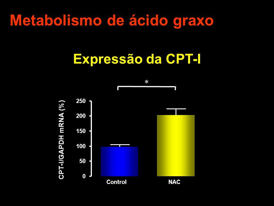 Expressão da CPT-I ControlNAC 0 50 100 150 200 250 * CPT-I/GAPDH mRNA (%) Metabolismo de ácido graxo