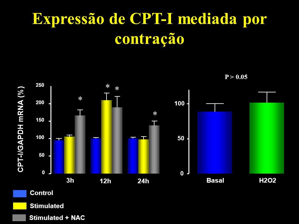 Expressão de CPT-I mediada por contração 0 50 100 150 200 250 0 50 100 NAC Control Stimulated NAC Stimulated + NAC 3h 12h24h CPT-I/GAPDH mRNA (%) * *