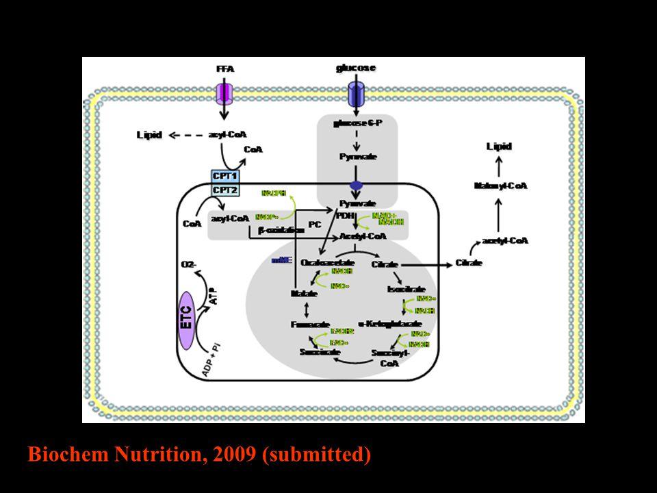 Biochem Nutrition, 2009 (submitted)