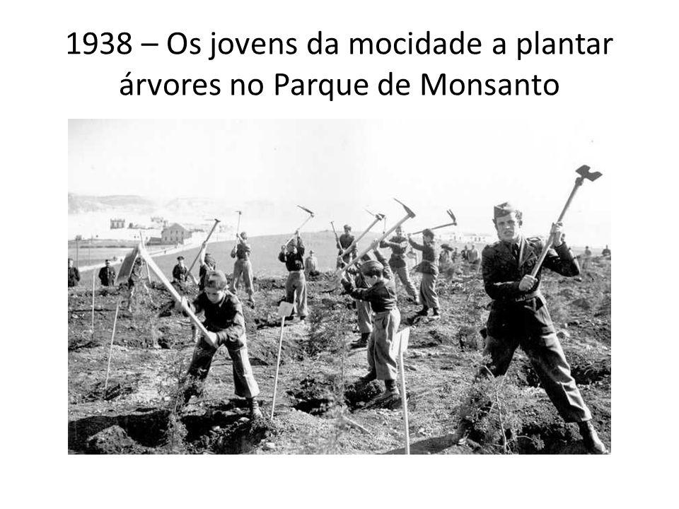 1938 – Os jovens da mocidade a plantar árvores no Parque de Monsanto