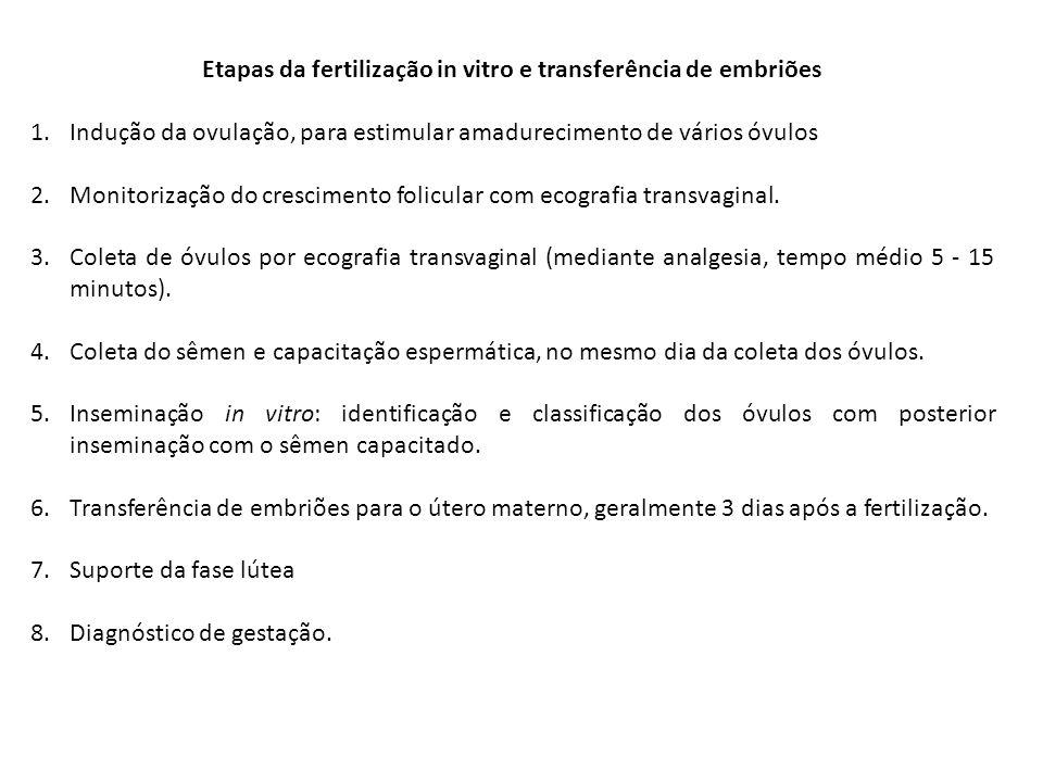 Etapas da fertilização in vitro e transferência de embriões 1.Indução da ovulação, para estimular amadurecimento de vários óvulos 2.Monitorização do c