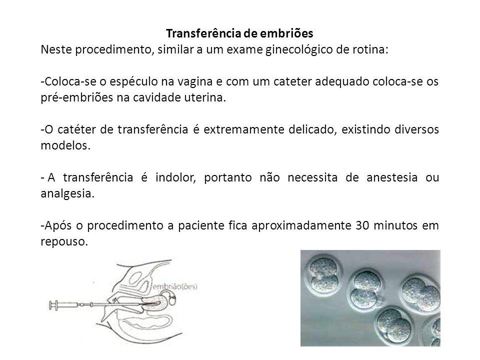 Transferência de embriões Neste procedimento, similar a um exame ginecológico de rotina: -Coloca-se o espéculo na vagina e com um cateter adequado coloca-se os pré-embriões na cavidade uterina.