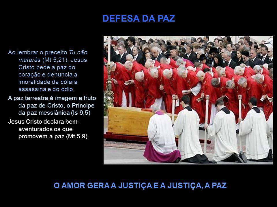 DEFESA DA PAZ O AMOR GERA A JUSTIÇA E A JUSTIÇA, A PAZ Ao lembrar o preceito Tu não matarás (Mt 5,21), Jesus Cristo pede a paz do coração e denuncia a
