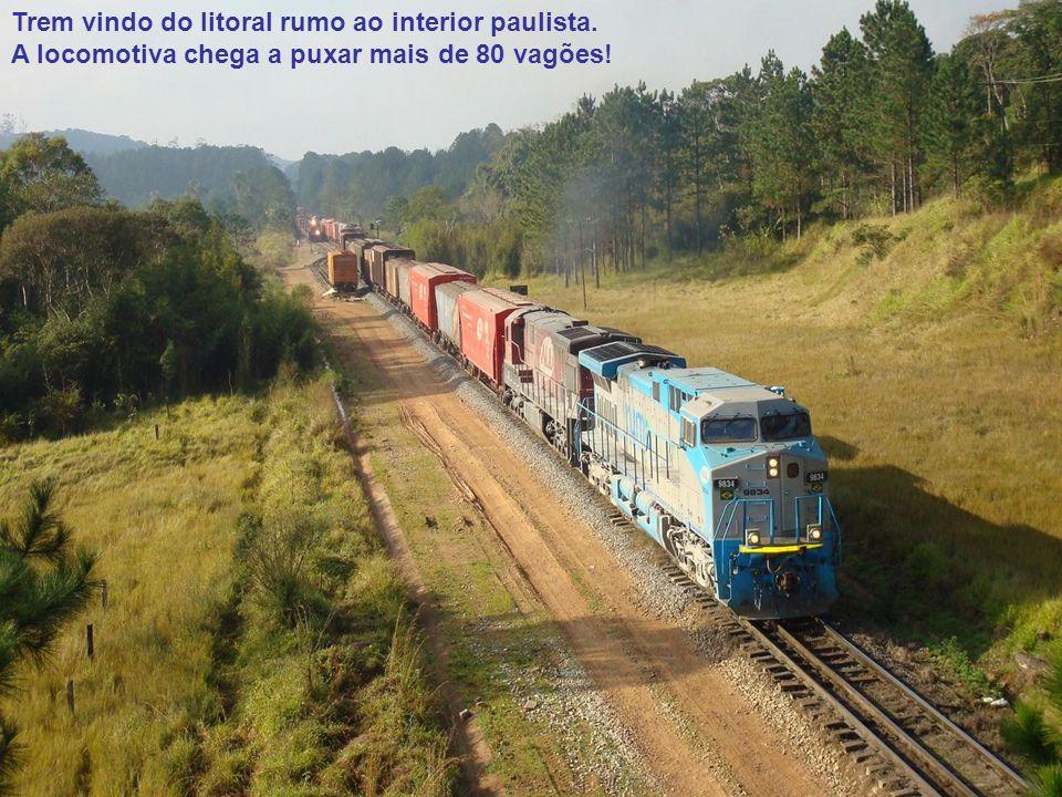 Trem vindo do litoral rumo ao interior paulista. A locomotiva chega a puxar mais de 80 vagões!