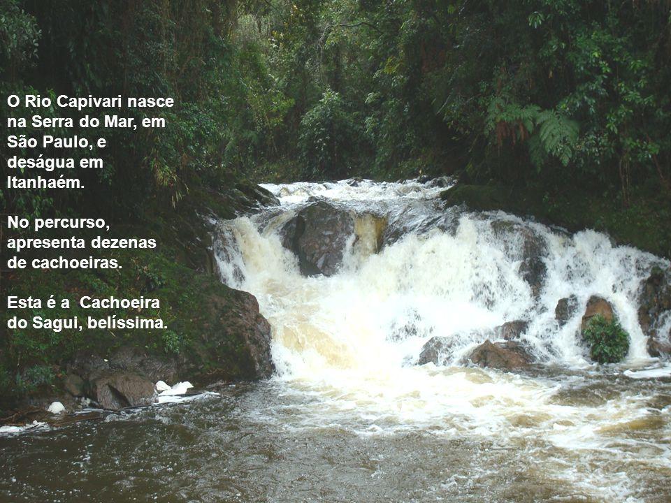 O Rio Capivari nasce na Serra do Mar, em São Paulo, e deságua em Itanhaém.