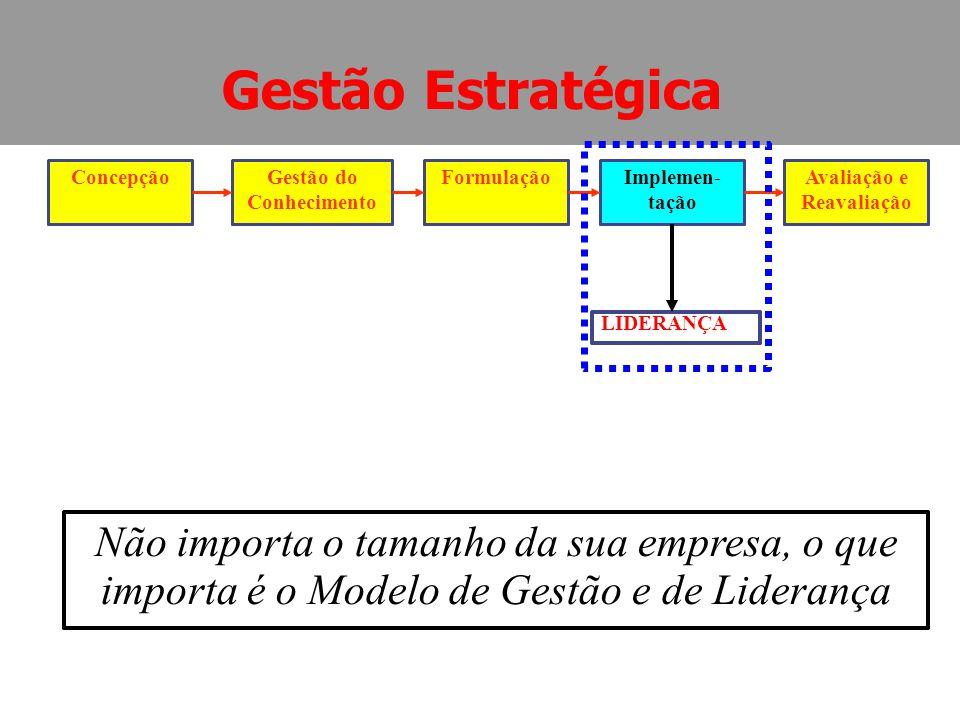 ConcepçãoGestão do Conhecimento FormulaçãoImplemen- tação Avaliação e Reavaliação LIDERANÇA Gestão Estratégica Não importa o tamanho da sua empresa, o