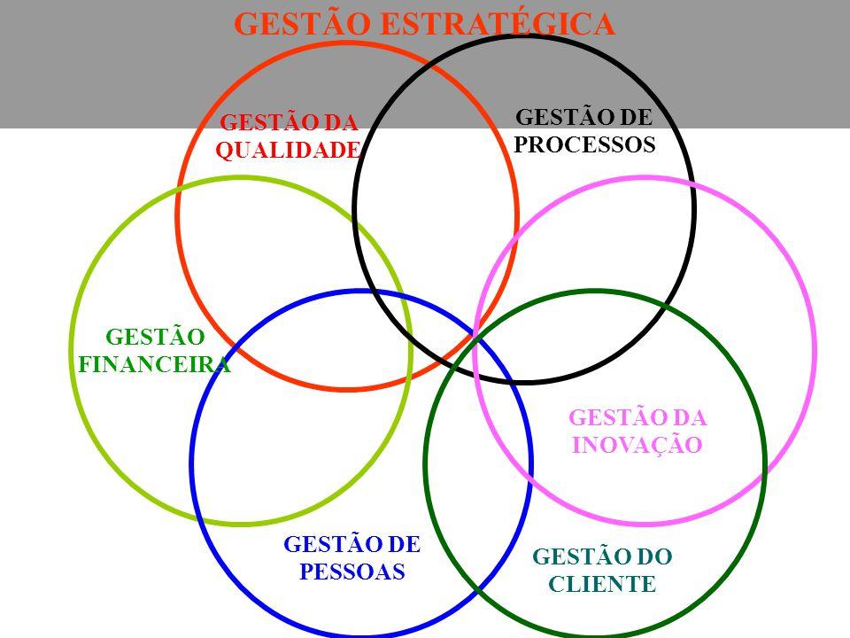 GESTÃO ESTRATÉGICA GESTÃO FINANCEIRA GESTÃO DE PESSOAS GESTÃO DO CLIENTE GESTÃO DA INOVAÇÃO GESTÃO DE PROCESSOS GESTÃO DA QUALIDADE