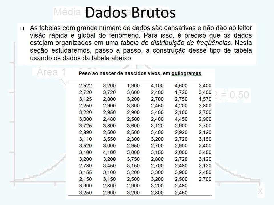 Dados Brutos