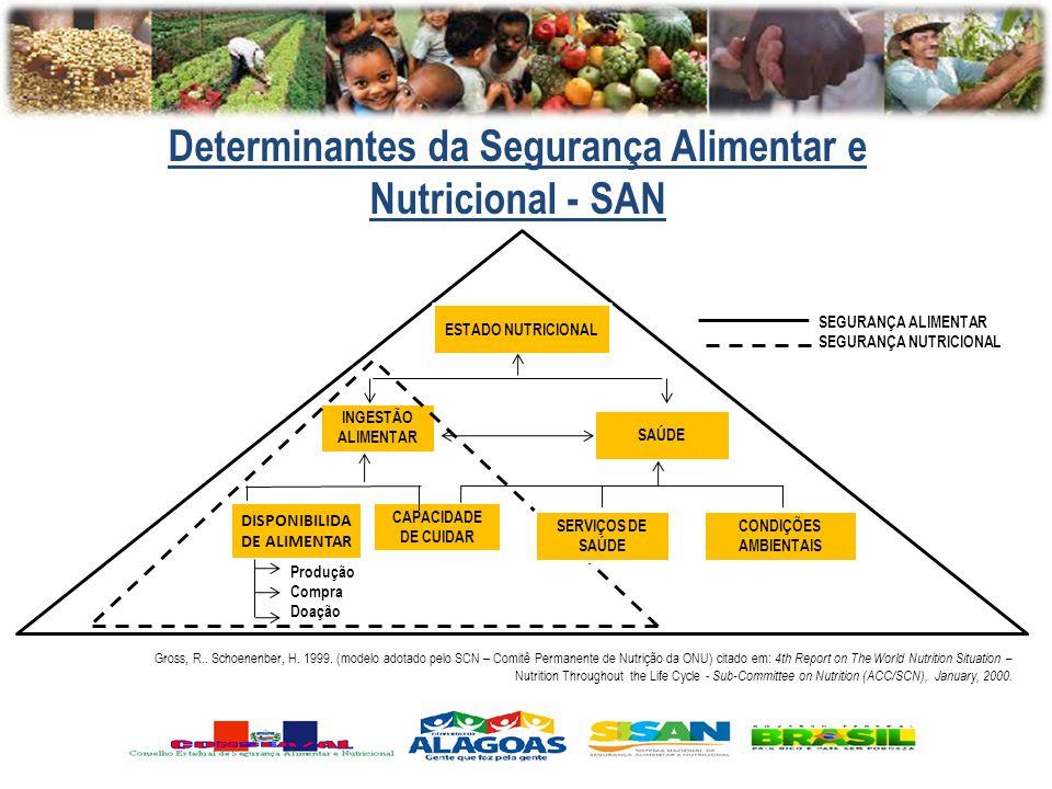 Gross, R.. Schoenenber, H. 1999. (modelo adotado pelo SCN – Comitê Permanente de Nutrição da ONU) citado em: 4th Report on The World Nutrition Situati