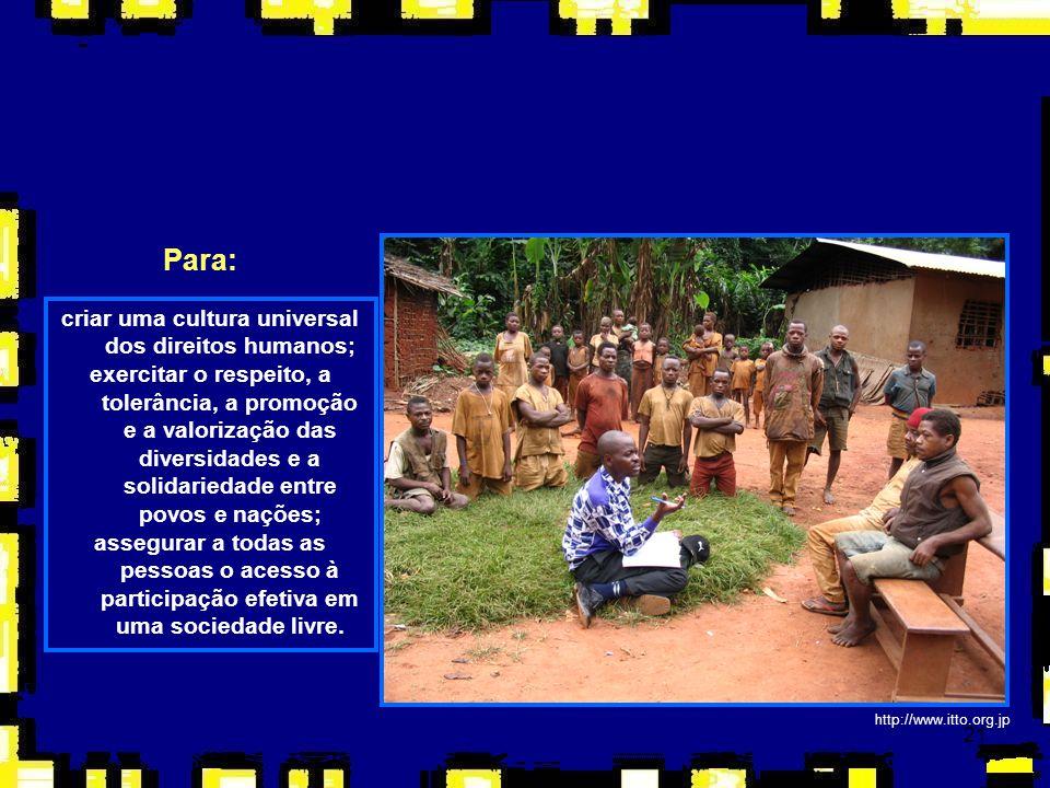 21 http://www.itto.org.jp Para: criar uma cultura universal dos direitos humanos; exercitar o respeito, a tolerância, a promoção e a valorização das d