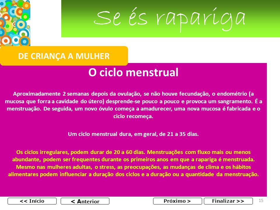 Se és rapariga O ciclo menstrual Aproximadamente 2 semanas depois da ovulação, se não houve fecundação, o endométrio (a mucosa que forra a cavidade do útero) desprende-se pouco a pouco e provoca um sangramento.