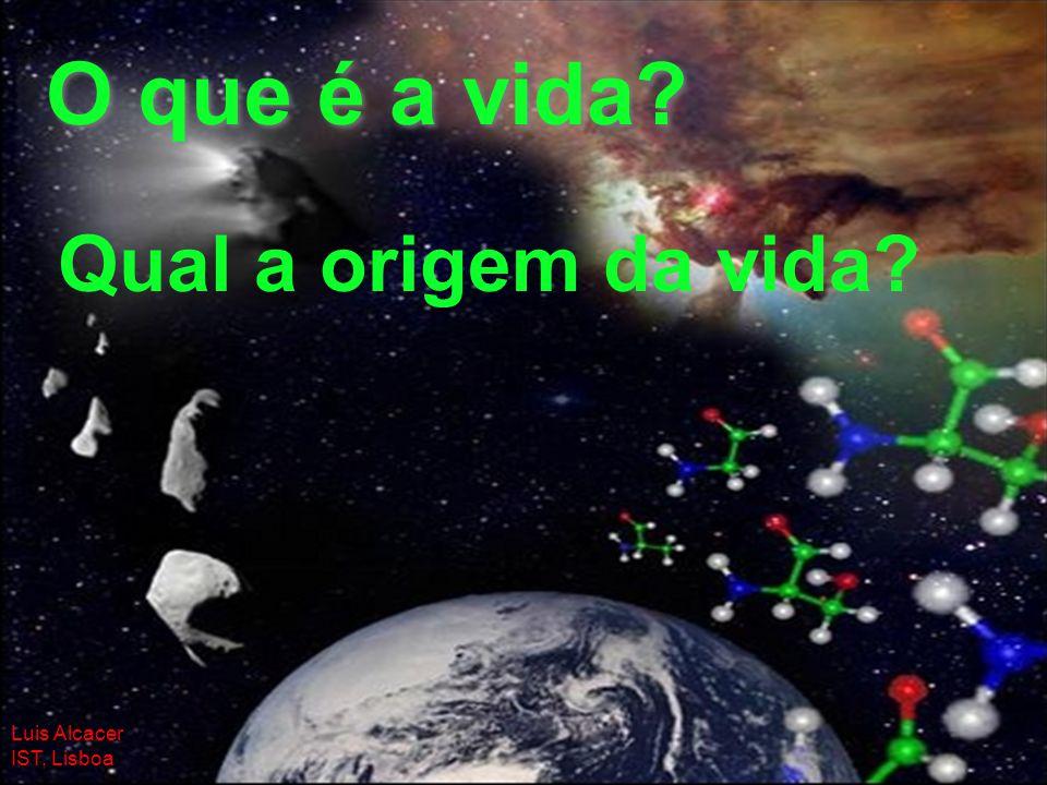 1 O que é a vida? Qual a origem da vida? Luis Alcacer IST, Lisboa