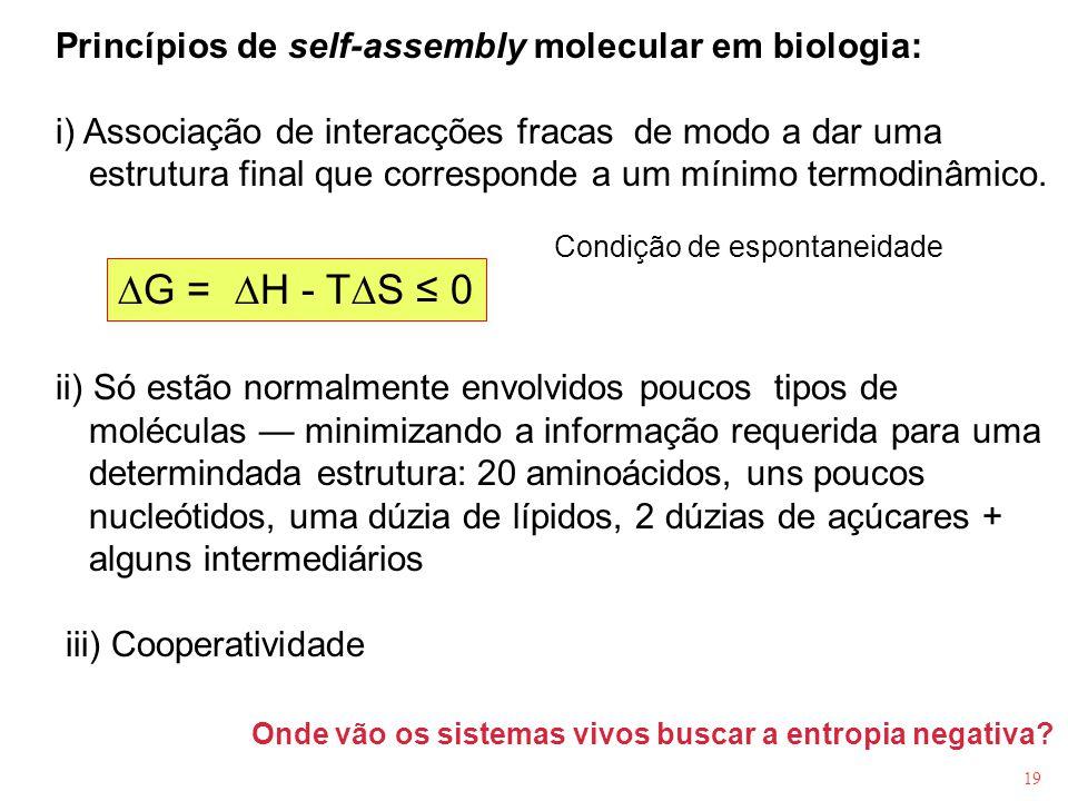 19 Princípios de self-assembly molecular em biologia: i) Associação de interacções fracas de modo a dar uma estrutura final que corresponde a um mínim