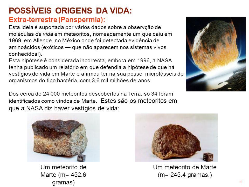 4 POSSÍVEIS ORIGENS DA VIDA: Extra-terrestre (Panspermia): Esta ideia é suportada por vários dados sobre a observção de moléculas da vida em meteorito
