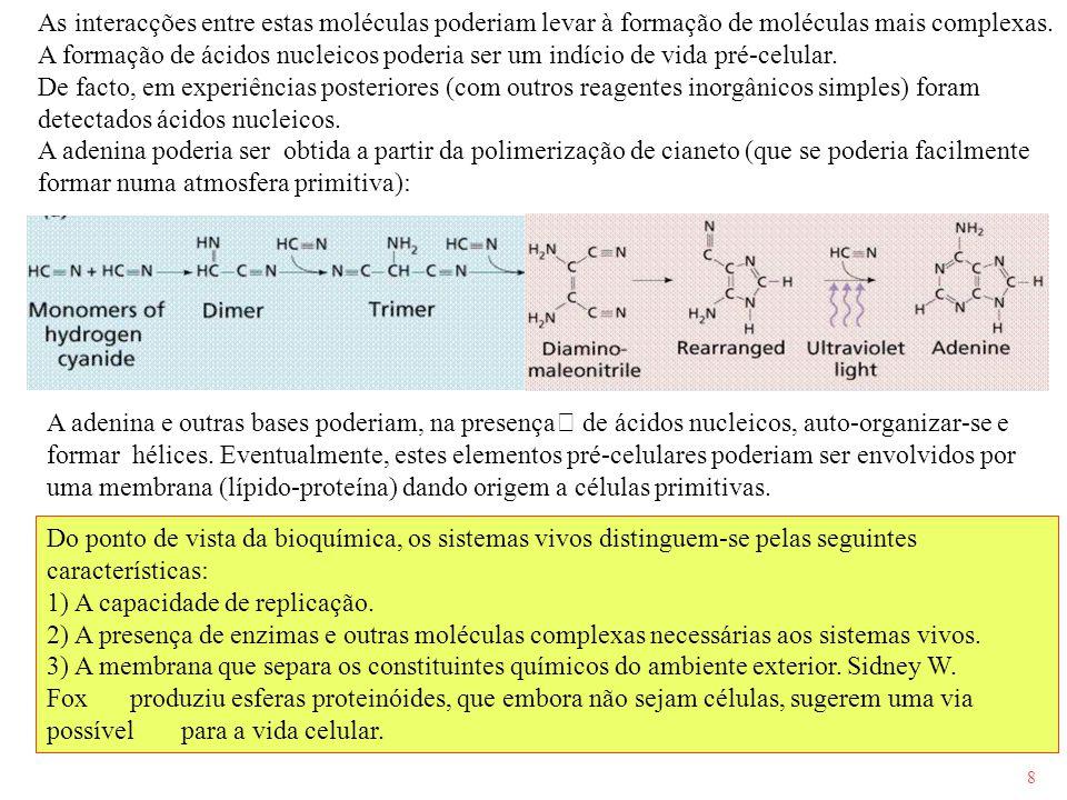 8 As interacções entre estas moléculas poderiam levar à formação de moléculas mais complexas. A formação de ácidos nucleicos poderia ser um indício de