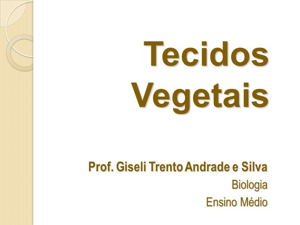 Tecidos Vegetais Prof. Giseli Trento Andrade e Silva Biologia Ensino Médio