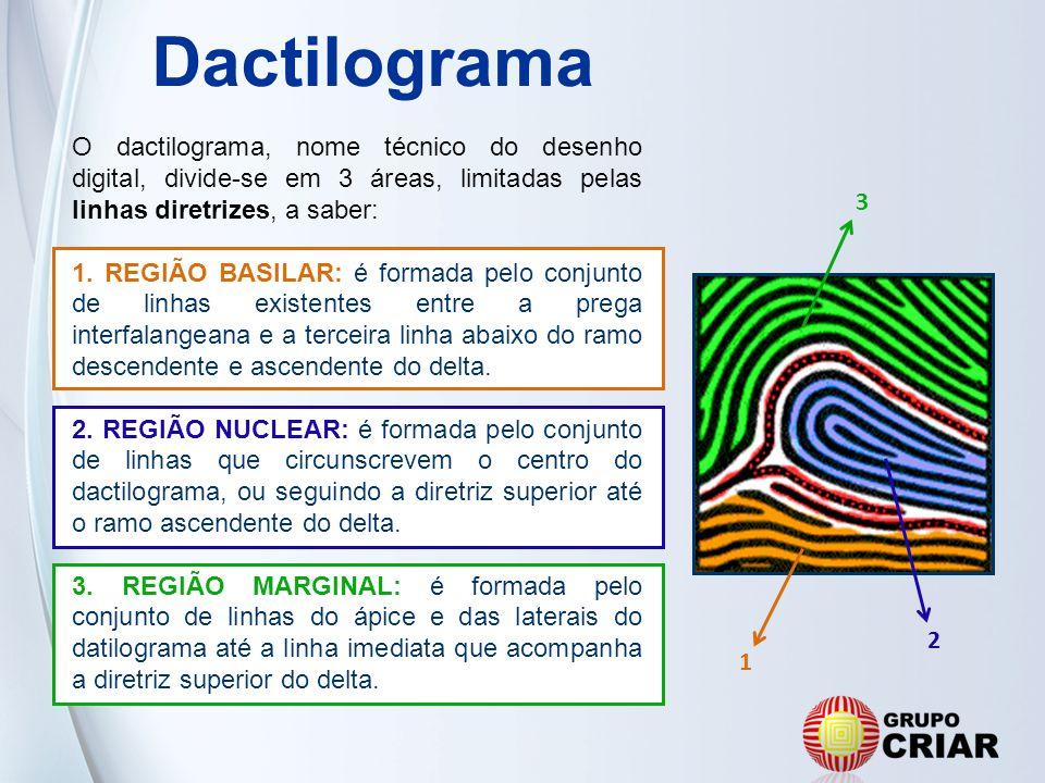 Dactilograma O dactilograma, nome técnico do desenho digital, divide-se em 3 áreas, limitadas pelas linhas diretrizes, a saber: 1. REGIÃO BASILAR: é f