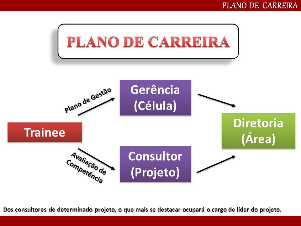 Diretoria (Área) Gerência (Célula) Trainee PLANO DE CARREIRA Consultor (Projeto) Dos consultores de determinado projeto, o que mais se destacar ocupar
