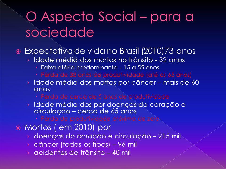 Expectativa de vida no Brasil (2010)73 anos Idade média dos mortos no trânsito - 32 anos Faixa etária predominante - 15 a 55 anos Perda de 33 anos de
