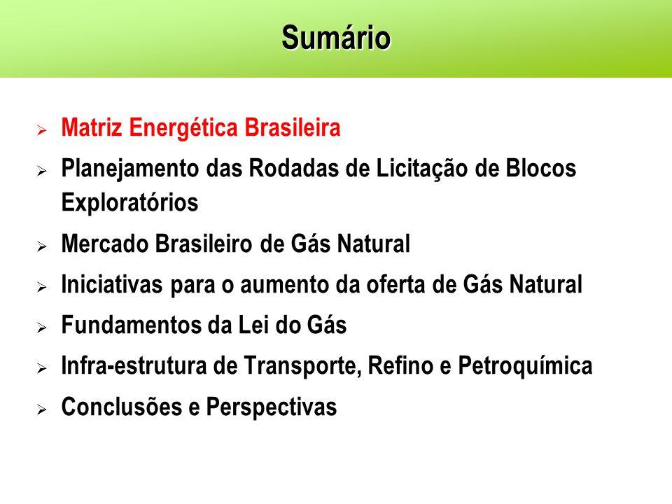 Sumário Matriz Energética Brasileira Planejamento das Rodadas de Licitação de Blocos Exploratórios Mercado Brasileiro de Gás Natural Iniciativas para o aumento da oferta de Gás Natural Fundamentos da Lei do Gás Infra-estrutura de Transporte, Refino e Petroquímica Conclusões e Perspectivas