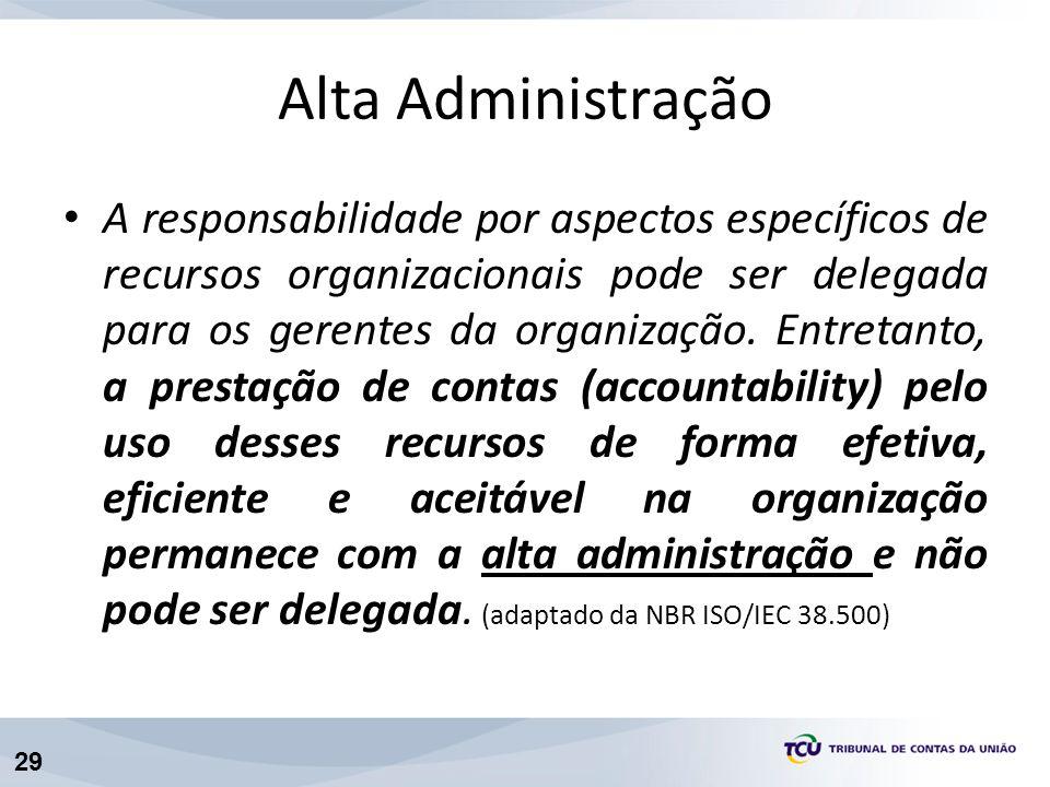 29 Alta Administração A responsabilidade por aspectos específicos de recursos organizacionais pode ser delegada para os gerentes da organização. Entre