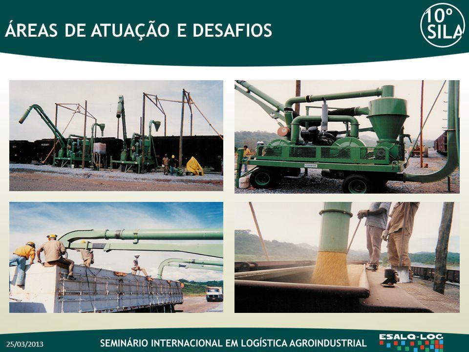 25/03/2013 ÁREAS DE ATUAÇÃO E DESAFIOS