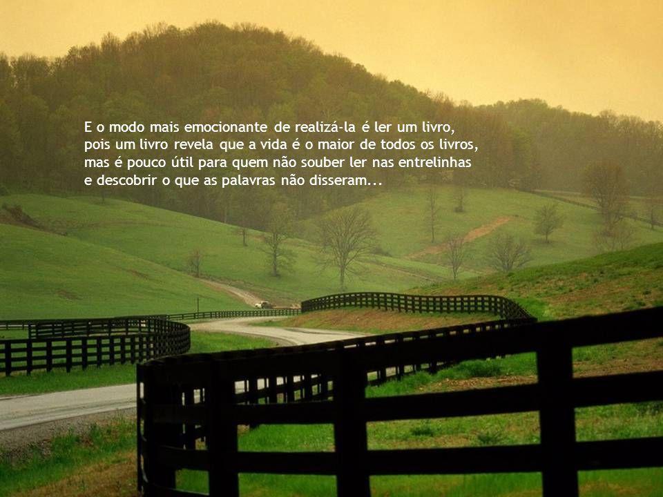 A maior aventura de um ser humano é viajar. E a maior viagem que alguém pode empreender É para dentro de si mesmo.