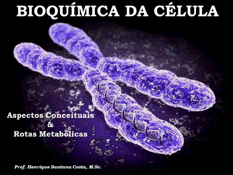 Aspectos Conceituais & Rotas Metabólicas Prof. Henrique Santana Costa, M.Sc. BIOQUÍMICA DA CÉLULA